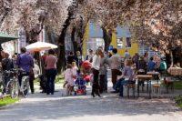 2012_03_31_dan_ulice_ringlova_reljkovica_490